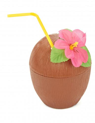 Kokosnød Hawaii