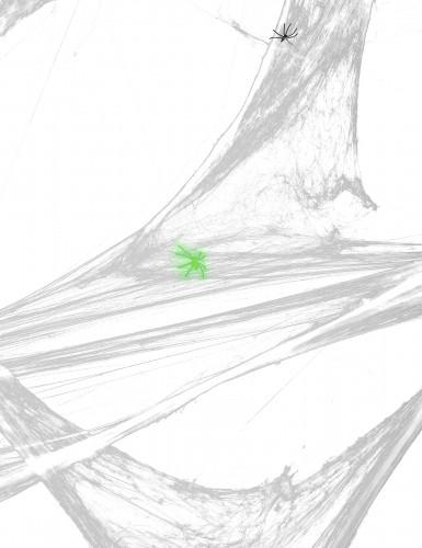 Hvidt spindelvæv med edderkopper 500 g-2