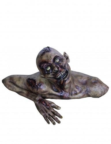 Zombiebuste Halloween
