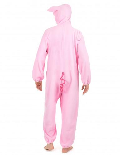 Kostume gris til kvinder-2