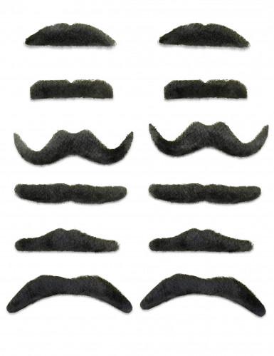 12 Sorte moustacher