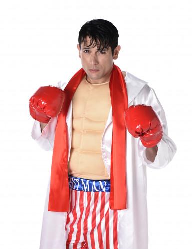 Boxerkostume-1