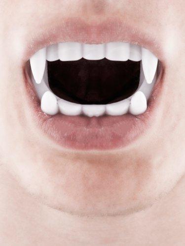 Vampyrgebis hvidt