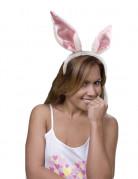 Kaninører voksen