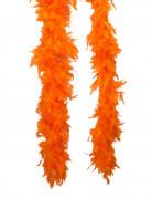 Orange Boa 50 g