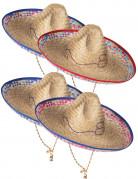 Mexicansk Sombrero i Strå Voksen