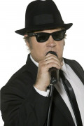 Briller sorte Blues Brothers™ til voksne