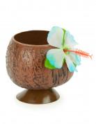 Hawaii kokosnøddekrus