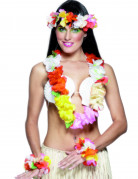 Kit multifarvet Hawaii
