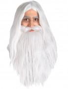 Gandalfparyk og skæg Ringenes Herre™ voksen