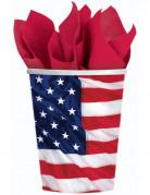 Krus med amerikansk flag