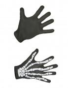 Handsker skelet voksen