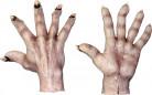 Zombiehænder med lys hud Voksen Halloween