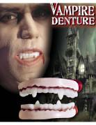 Vampyrtænder voksen Halloween