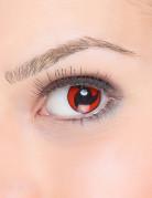 Kontaktlinser fantasy sorte propeller på rød baggrund voksen