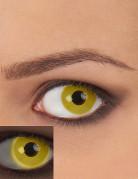Kontaktlinser UV gul voksen