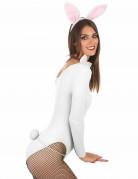 Kit kanin hvid og lyserød