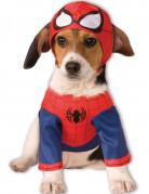 Hundekostume Spider-Man™
