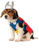 Hundekostume Thor™