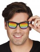 Briller regnbuefarvet til voksne