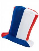 Hat høj musik supporter Frankrig