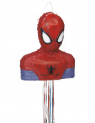 Piñata Spiderman™