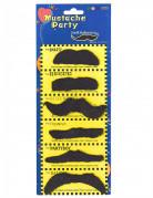 Pakke med 6 stk. moustacher til voksne