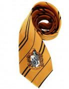 Hufflepuff slips - Harry potter™