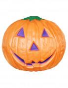 Dekoration græskar Halloween