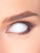 Kontaktlinse blind hvid til voksne