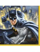 16 Papirservietter Batman™ 33 x 33 cm