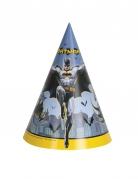8 Festhatte Batman™