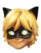 Maske i karton Cat Noir Miraculous Lady Bug™ til børn