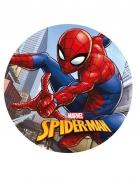 Kagedekoration Spiderman™ 20 cm