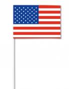 Papirflag USA 14 x 21 cm
